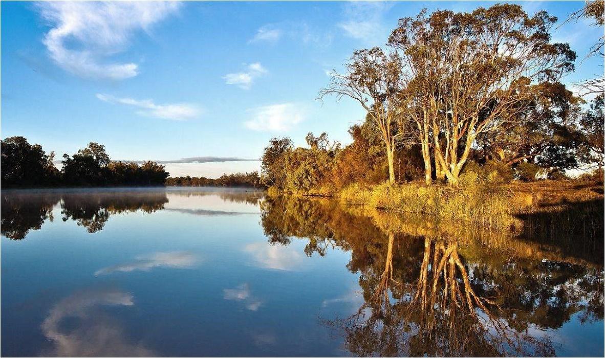 rio murray